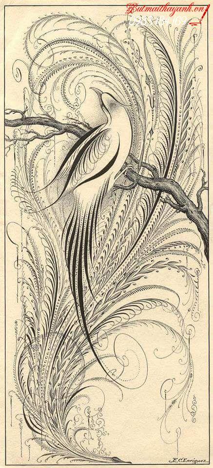 nghệ thuật calligraphy phương tây